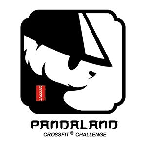 pandalandimagesite.png
